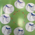 Disturbi da interferenza del disco o click mandibolari
